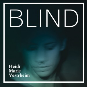 cover blind til nett